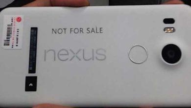 Photo de Fuite de la première image du futur Nexus 5 de LG ?