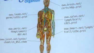 Photo de Google : création d'une nouvelle filiale de biotechnologie dédiée aux sciences de la vie