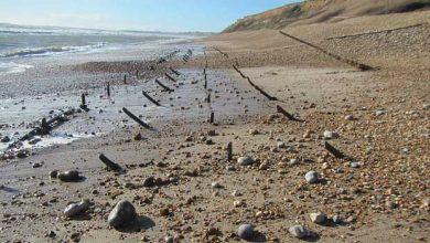 Photo of L'activité humaine est la principale cause de l'érosion littorale