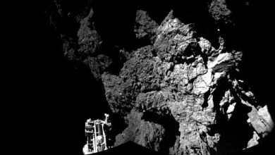 Photo de Philae : l'origine de la vie sur Tchouri ?