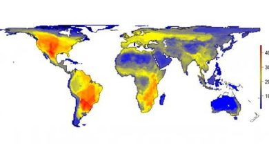 Photo de Que serait la Terre si l'humain n'avait jamais existé ?