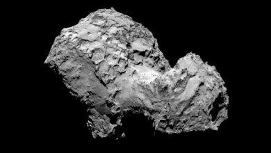 Photo de Tchouri : la comète s'apprête à passer au plus près du Soleil