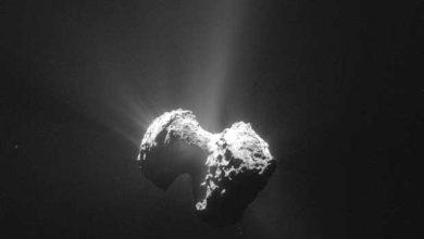 Photo de Rosetta, Philae et Tchouri bientôt au plus près du Soleil