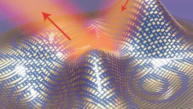 Photo of À quoi pourrait bien servir une cape d'invisibilité ?