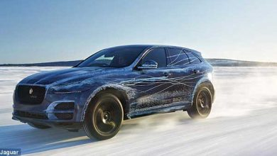 Photo de F-Pace : Jaguar dévoile son SUV