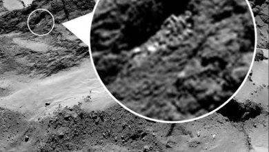 Photo de Mission Rosetta : un corps congelé de cyborg alien à la surface de Tchouri ?