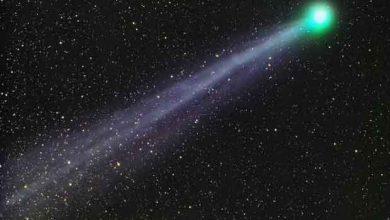 De l'alcool et du sucre dégagés par la comète lovejoy