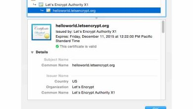 Photo de Let's Encrypt : important pas en avant en matière de HTTPS