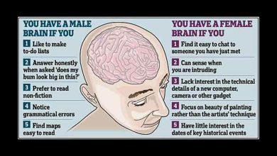Photo of Les cerveaux masculins gagnent plus que les cerveaux féminins