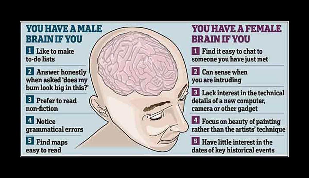 Les cerveaux masculins gagnent plus que les cerveaux féminins