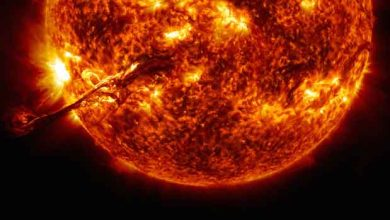 Photo de Thermonuclear art : l'incroyable vidéo 4K du soleil diffusée par la NASA