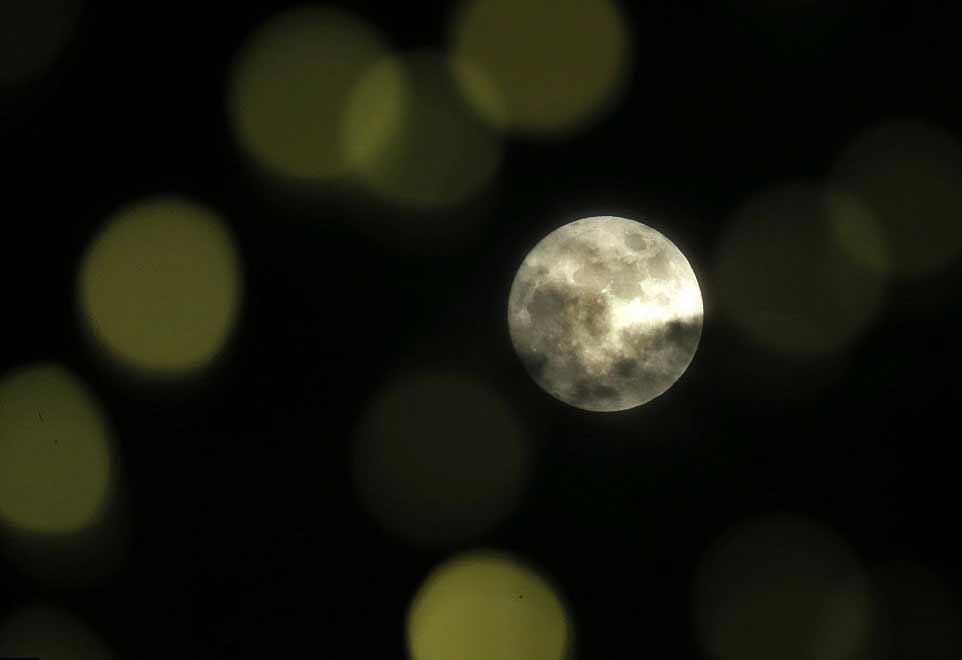 La lune vue à travers un sapin de Noël, à Lawrence, au Kansas