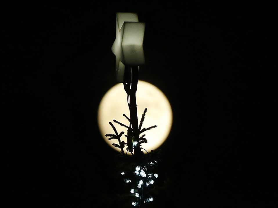 Pleine Lune observée derrière un sapin de Trafalgar Square