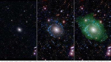 Photo of La galaxie UGC 1382 est une belle surprise pour les astronomes