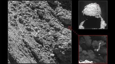 Photo de Rosetta a enfin retrouvé Philae à la surface de Tchouri