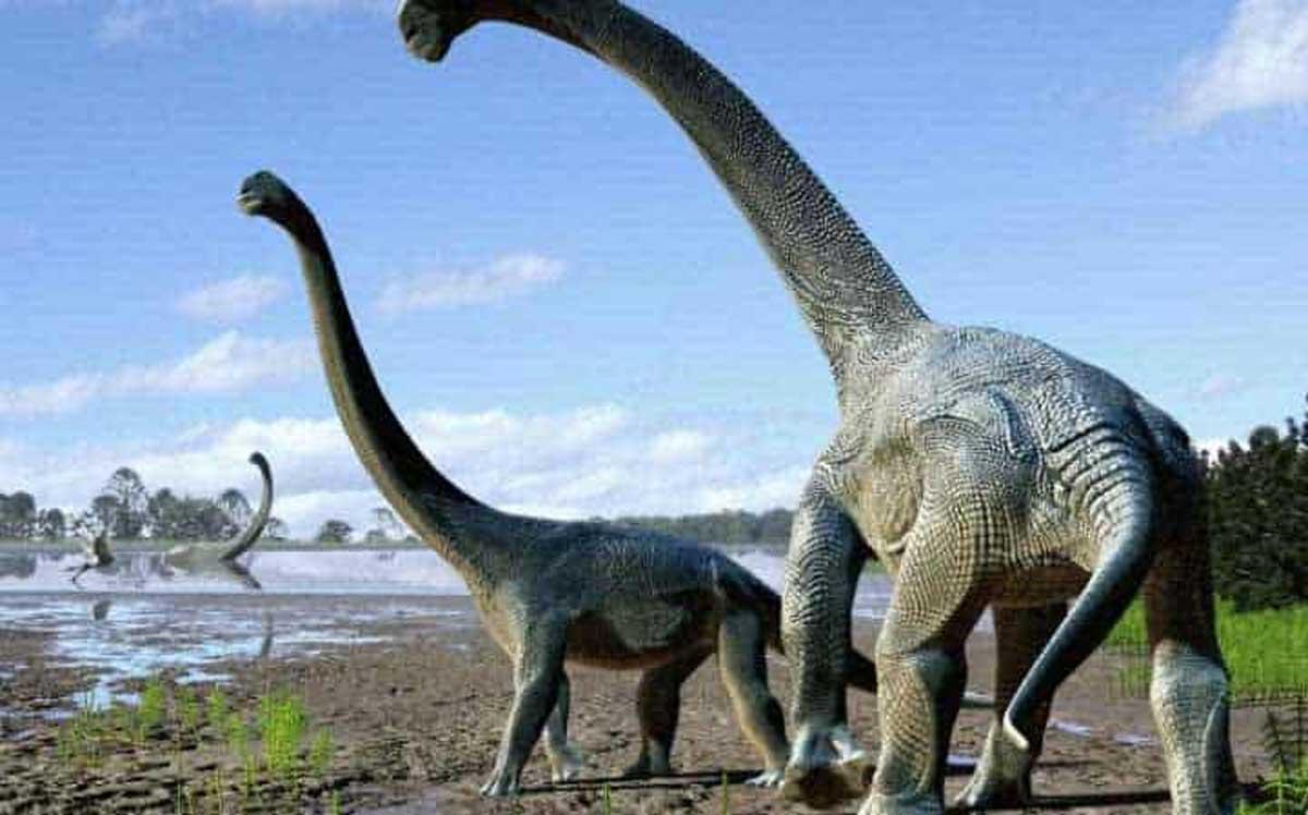 Une espèce de dinosaure géant inconnue a été découverte en Australie