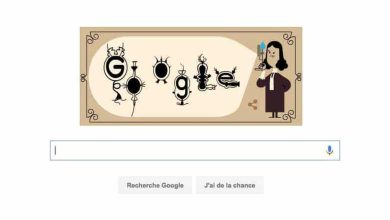 Photo of Google honore le biologiste Antoni van Leeuwenhoek