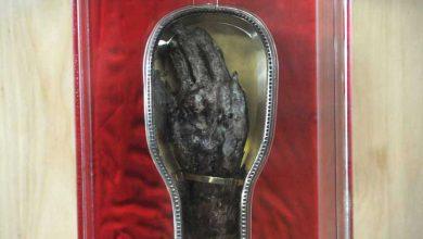 Photo de Un bras vieux de 465 ans en tournée pancanadienne