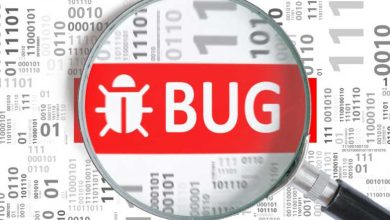 Bug informatique