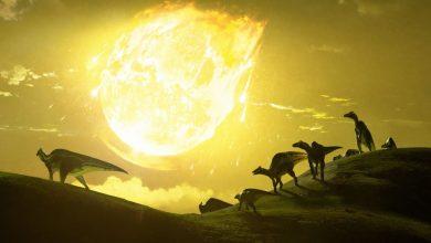 L'astéroïde tueur de dinosaures qui a frappé la Terre a produit un gigantesque bassin de magma.