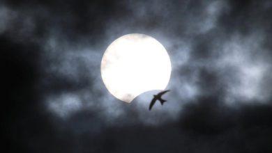 Eclipse solaire : La vue de l'éclipse partielle de Yevpatoria, en Crimée