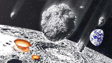 Photo de Une grande pluie d'astéroïdes a frappé la Terre et la Lune il y a 800 millions d'années