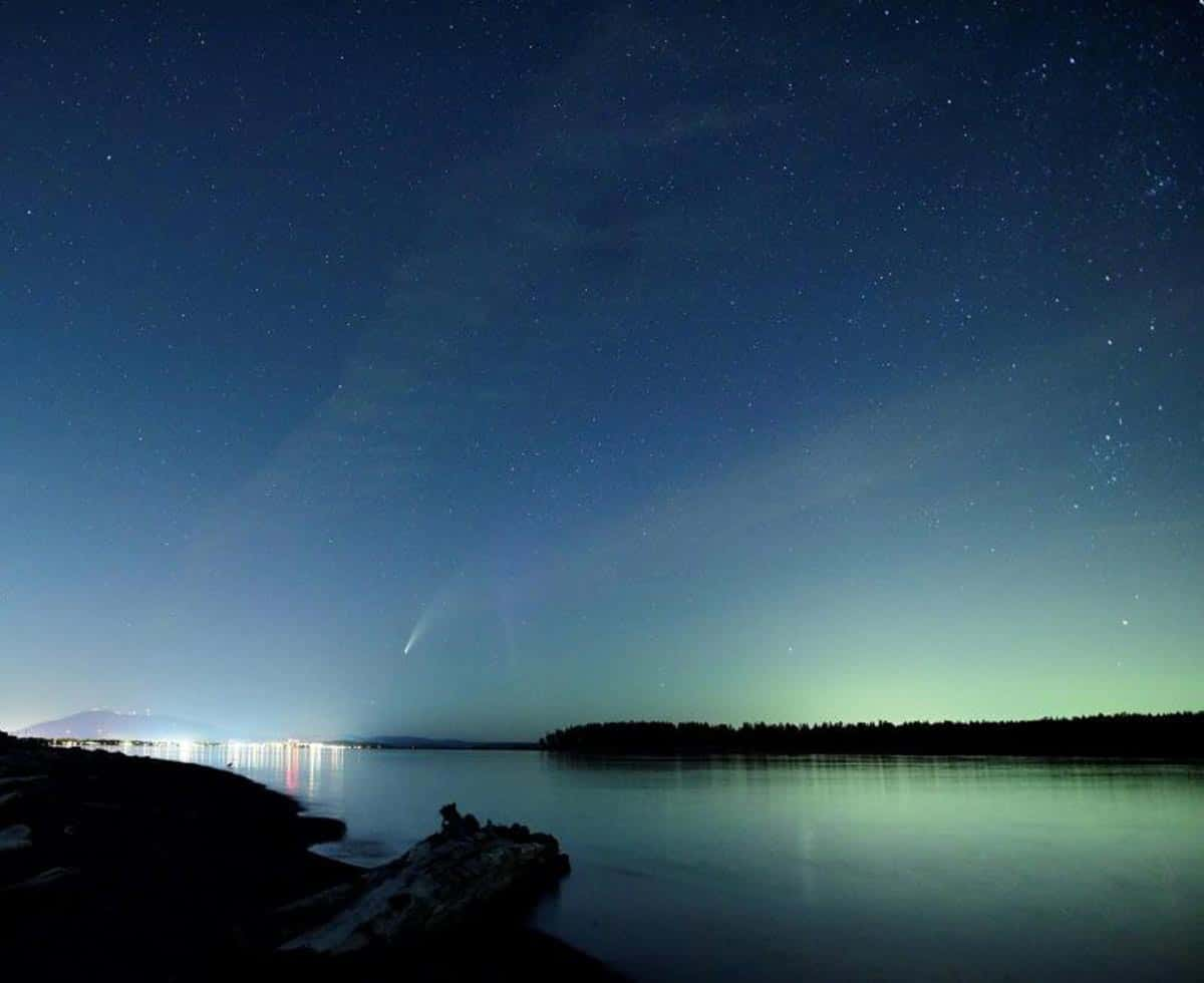 Cette merveilleuse comète binoculaire a orné notre ciel matinal au début du mois de juillet.