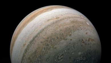 Photo of Jupiter en opposition au Soleil en juillet 2020