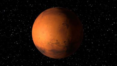 Photo de Trois grands mystères sur la vie sur Mars