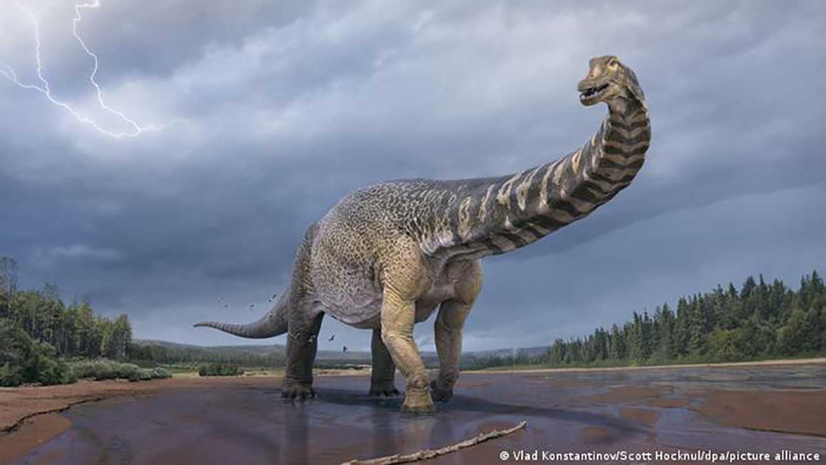 Les scientifiques confirment la découverte du plus grand dinosaure d'Australie