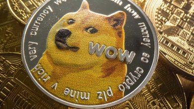 Cette photo, prise le 6 août 2021, montre une représentation de la crypto-monnaie Dogecoin.